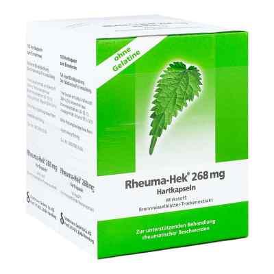 Rheuma-Hek 268mg  bei apo-discounter.de bestellen
