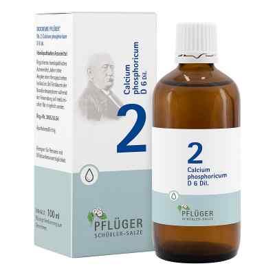 Biochemie Pflüger 2 Calcium phosphoricum D6 Tropfen  bei apo-discounter.de bestellen