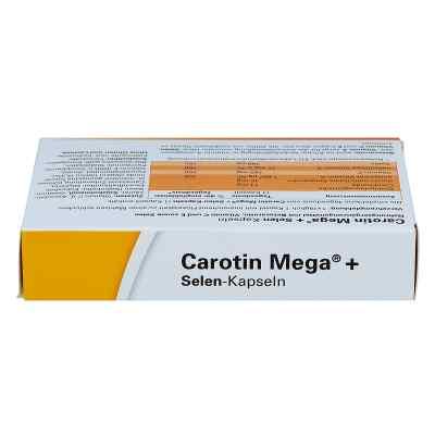 Carotin Mega + Selen Kapseln  bei apo-discounter.de bestellen