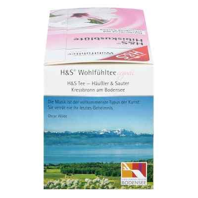 H&s Hibiskusblüte Filterbeutel  bei apo-discounter.de bestellen