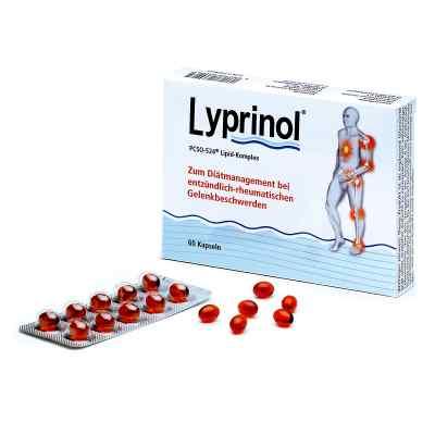 Lyprinol Kapseln  bei apo-discounter.de bestellen