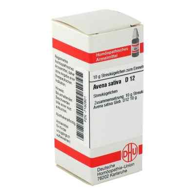 Avena Sativa D 12 Globuli  bei apo-discounter.de bestellen