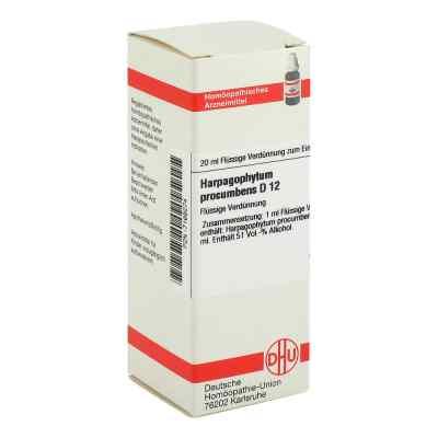 Harpagophytum Proc. D12 Dilution  bei apo-discounter.de bestellen