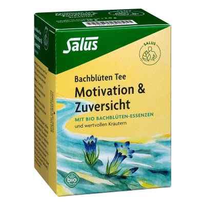 Bachblüten Tee Motivation & Zuversicht Bio Salus