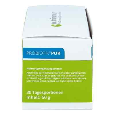 Probiotik Pur Pulver  bei apo-discounter.de bestellen