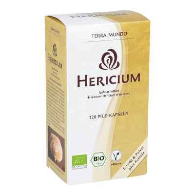 Hericium Vitalpilz Bio Terra Mundo Kapseln  bei apo-discounter.de bestellen