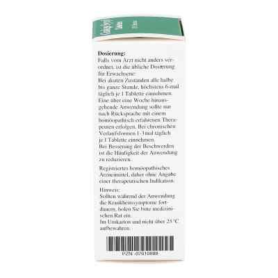 Ginkgo Syxyl Tabletten  bei apo-discounter.de bestellen