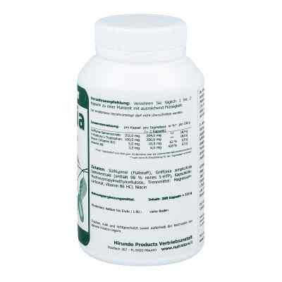 Griffonia 5 Htp 100 mg vegetarische Kapseln  bei apo-discounter.de bestellen