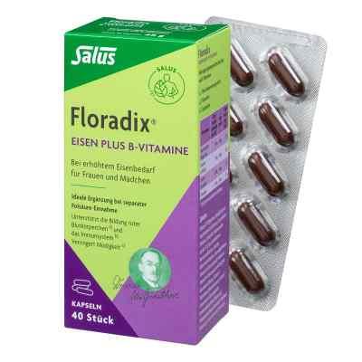 Floradix Eisen plus B Vitamine Kapseln  bei bioapotheke.de bestellen