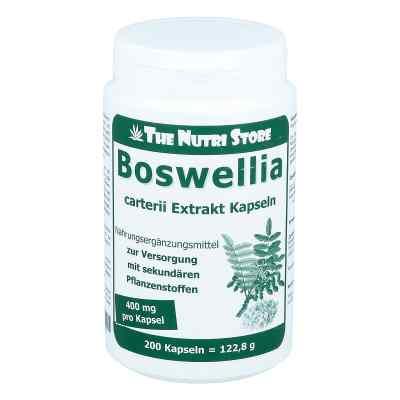 Boswellia Carterii 400 mg Extrakt veget. Kapseln  bei apo-discounter.de bestellen