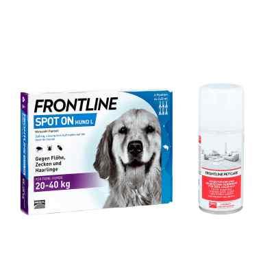 Anti-Floh Set für Hunde Frontline Spot on H 40 ...
