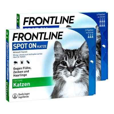 Frontline Set Katze gegen Zecken und Flöhe  bei apo-discounter.de bestellen