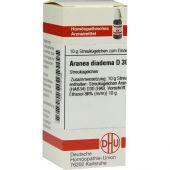 Aranea Diadema D 30 Globuli  bei apo-discounter.de bestellen