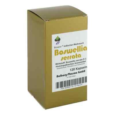 Boswellia serrata Bioxera Kapseln  bei apo-discounter.de bestellen