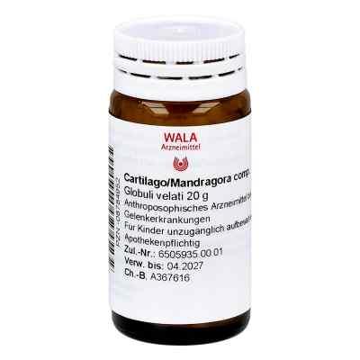 Cartilago/mandragora compositus Globuli  bei apo-discounter.de bestellen