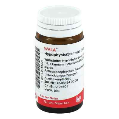 Hypophysis/stannum Globuli