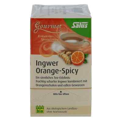 Ingwer Orange Spicy Tee Salus  bei apo-discounter.de bestellen