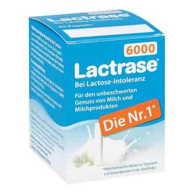 Lactrase 6.000 Fcc Kapseln  bei bioapotheke.de bestellen