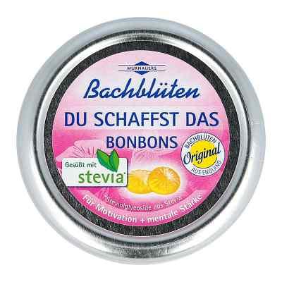 Bachblüten Murnauer Du schaffst das Bonbons  bei apo-discounter.de bestellen