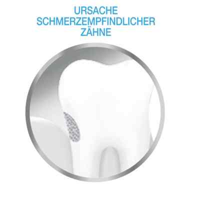 Sensodyne Repair & Protect whitening Zahnpasta  bei apo-discounter.de bestellen