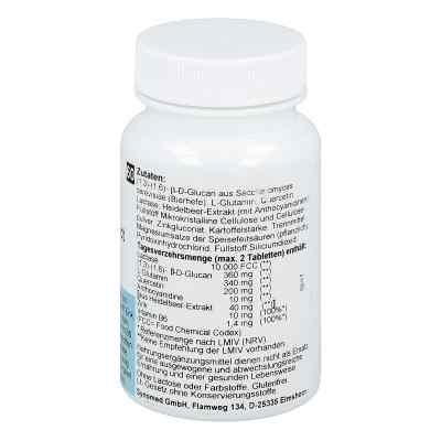Intest protect Tabletten  bei apo-discounter.de bestellen