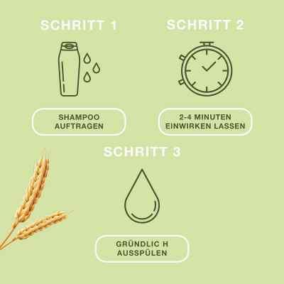 Priorin Shampoo - ergänzende Pflege für kraftloses Haar  bei apo-discounter.de bestellen