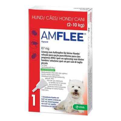 Amflee 67 mg Lösung zum Auftropfen für kleine Hunde  bei apo-discounter.de bestellen