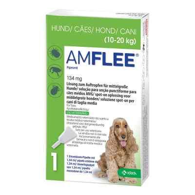 Amflee 134 mg Lösung zur, zum Auftropfen für mittelgr.Hunde  bei apo-discounter.de bestellen