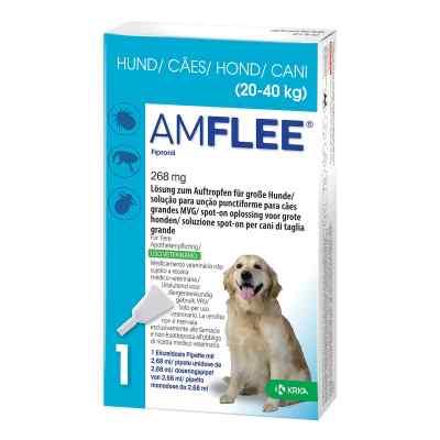 Amflee 268 mg Lösung zur, zum Auftropfen für grosse Hunde  bei apo-discounter.de bestellen