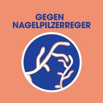 Sagrotan Wäsche-hygienespüler Desinfektion  bei apo-discounter.de bestellen