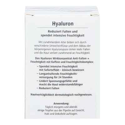 Hyaluron Wirkkonzentrat Anti-falten+feuchtigkeit  bei apo-discounter.de bestellen