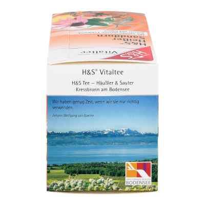 H&s Heisser Sanddorn Vitaltee Filterbeutel  bei apo-discounter.de bestellen
