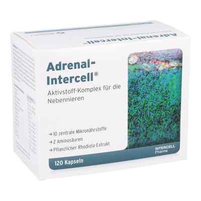 Adrenal-intercell Kapseln  bei apo-discounter.de bestellen