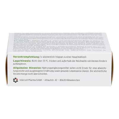 D3-intercell Vegan 10.000 I.e. Kapseln  bei apo-discounter.de bestellen