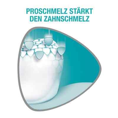 Sensodyne Proschmelz strong & white Zahnpasta  bei apo-discounter.de bestellen