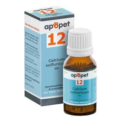Apopet Schüssler-salz Nummer 12  Calcium sulf.D 6 veterinär   bei apo-discounter.de bestellen
