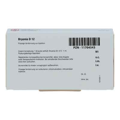 Bryonia D 12 Ampullen  bei apo-discounter.de bestellen