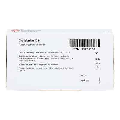 Chelidonium D 6 Ampullen  bei apo-discounter.de bestellen