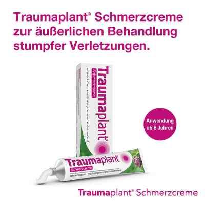 Traumaplant Schmerzcreme  bei apo-discounter.de bestellen