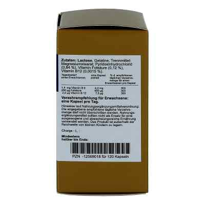 Folsäure+vitamin B6+b12 Komplex N Kapseln  bei apo-discounter.de bestellen