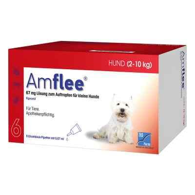 Amflee 67 mg Spot-on Lösung für kleine Hunde 2-10kg  bei apo-discounter.de bestellen