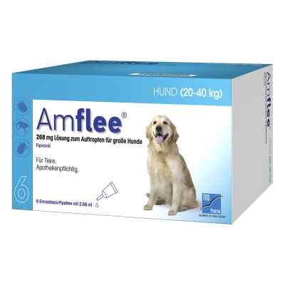 Amflee 268 mg Spot-on Lösung für grosse Hunde 20-40kg  bei apo-discounter.de bestellen