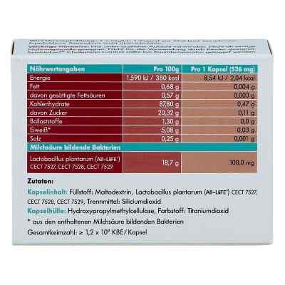 Symbio Lact Cholesterin Control Kapseln  bei apo-discounter.de bestellen