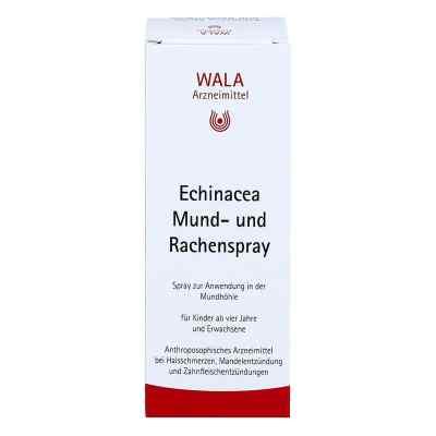 Echinacea Mund- und Rachenspray  bei apo-discounter.de bestellen