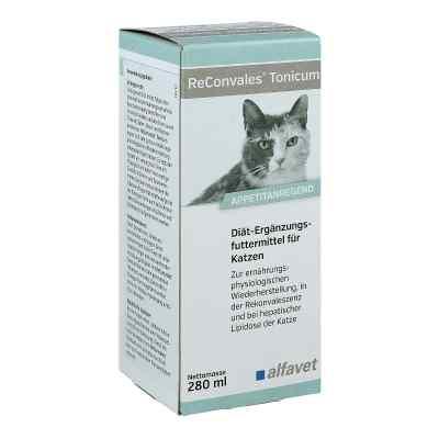 Reconvales Tonicum für Katzen  bei apo-discounter.de bestellen