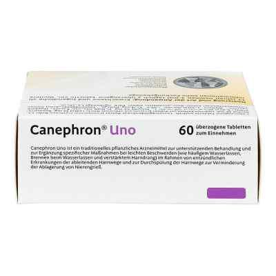 Canephron Uno überzogene Tabletten  bei apo-discounter.de bestellen