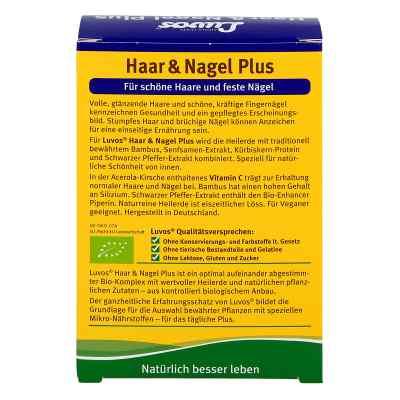 Luvos Heilerde Bio Haar & Nagel Plus Kapseln  bei apo-discounter.de bestellen