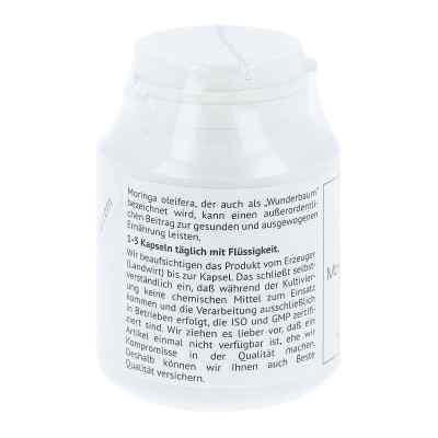 Moringa Moringa oleifera 380 mg Hartkapseln  bei apo-discounter.de bestellen
