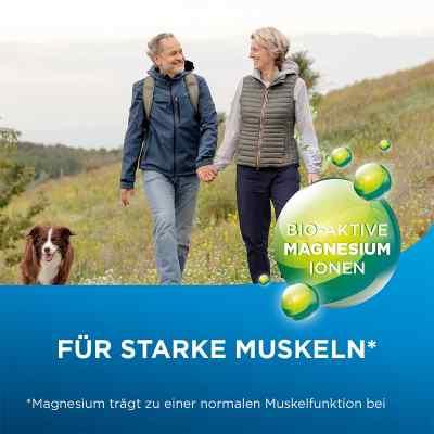 Biolectra Magnesium 300 mg Liquid  bei apo-discounter.de bestellen
