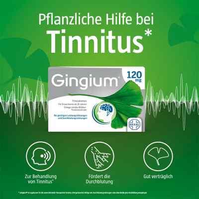Gingium 120 mg Filmtabletten  bei apo-discounter.de bestellen